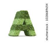 3d rendering of grass playing... | Shutterstock . vector #1028689654