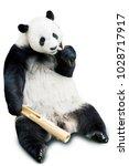 giant panda eating bamboo... | Shutterstock . vector #1028717917