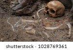 still life of archaeological... | Shutterstock . vector #1028769361