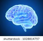 3d blue purple glowing xray...   Shutterstock . vector #1028814757