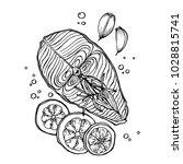 hand drawn vector sketch of... | Shutterstock .eps vector #1028815741