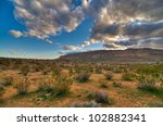 The Desert In Nevada   A...