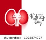 illustration of world kidney... | Shutterstock .eps vector #1028874727