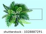 summer background of tropical... | Shutterstock .eps vector #1028887291