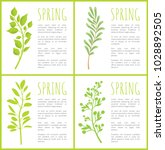 spring herbal plants posters... | Shutterstock .eps vector #1028892505