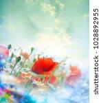 field of bright red poppy... | Shutterstock . vector #1028892955