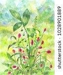beautiful green field with bush ...   Shutterstock . vector #1028901889