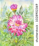 watercolor dahlia  flowering...   Shutterstock . vector #1028902369