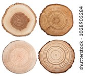 cross section of tree trunk... | Shutterstock . vector #1028903284