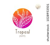 tropical plant logo. vector... | Shutterstock .eps vector #1028953501