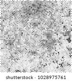 black and white radial halftone ... | Shutterstock .eps vector #1028975761