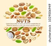poster of nuts food grains  of... | Shutterstock .eps vector #1029006949