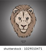 portrait of a lion. can be used ... | Shutterstock .eps vector #1029010471