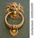knocker in metal lion's head on ... | Shutterstock . vector #1029013459