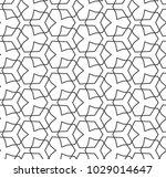 seamless geometric ornamental... | Shutterstock .eps vector #1029014647