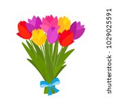 beautiful bouquet of colorful... | Shutterstock .eps vector #1029025591