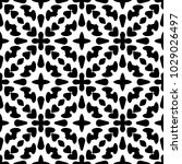 black and white seamless ethnic ... | Shutterstock .eps vector #1029026497