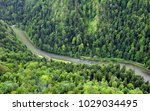 forest mountain landscape with... | Shutterstock . vector #1029034495