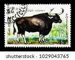 Small photo of MOSCOW, RUSSIA - NOVEMBER 26, 2017: A stamp printed in Lao People's Democratic Republic shows Kouprey (Bos sauveli), Endangered animals serie, circa 1990