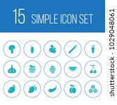 set of 15 fruit icons set.... | Shutterstock . vector #1029048061