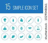 set of 15 fruit icons set....   Shutterstock . vector #1029048061