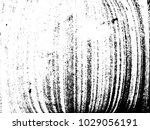 designed grunge background...   Shutterstock .eps vector #1029056191