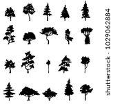 silhouette tree set on white... | Shutterstock .eps vector #1029062884