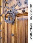 ancient engraved wooden  doors... | Shutterstock . vector #1029103285
