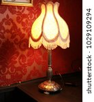 vintage old fabric lamp with... | Shutterstock . vector #1029109294