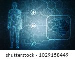 human brain 2d illustration  | Shutterstock . vector #1029158449