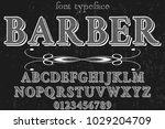 vintage font typeface... | Shutterstock .eps vector #1029204709