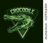 crocodile sports logo badge... | Shutterstock .eps vector #1029316504