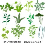 set of green silhouettes of... | Shutterstock .eps vector #1029327115