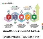infographics business template... | Shutterstock .eps vector #1029354445