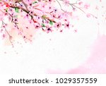 cherry blossom on pink... | Shutterstock . vector #1029357559