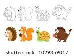 cartoon forest  animals set.... | Shutterstock .eps vector #1029359017