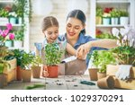 cute child girl helping her... | Shutterstock . vector #1029370291