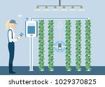 vertical greenhouse gardens.... | Shutterstock .eps vector #1029370825