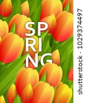 floral background with tulips | Shutterstock .eps vector #1029374497