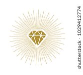 glitter gold shining diamond... | Shutterstock .eps vector #1029412774