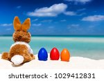 easter holiday concept  bunny... | Shutterstock . vector #1029412831