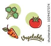 set of vegetables   Shutterstock .eps vector #1029437374