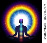 meditation man particular... | Shutterstock .eps vector #1029460975