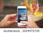 woman taking photo of freshly... | Shutterstock . vector #1029472735