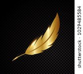 gold feather vector illustration | Shutterstock .eps vector #1029485584