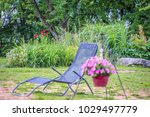 summer  in the garden near the... | Shutterstock . vector #1029497779