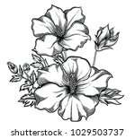 blooming exotic flowers  ... | Shutterstock .eps vector #1029503737