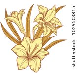 blooming lily flowers  ...   Shutterstock .eps vector #1029503815