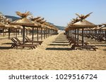 beach in golden sands. bulgaria | Shutterstock . vector #1029516724