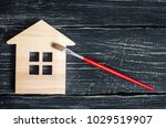 painting the house  repairing   ... | Shutterstock . vector #1029519907